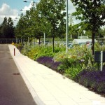 Litter picking, weed control, leaf clearance Commercial office suites