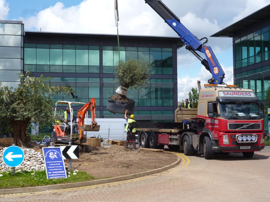 CHAS registered Landscape Contractors Hertfordshire