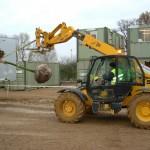 Mature Tree Planting Hertfordshire