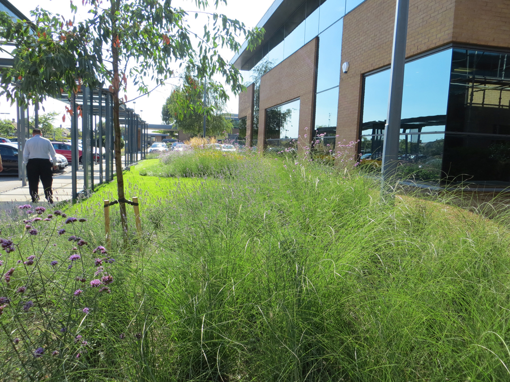 Commercial Business Park facilities management of grounds and landscapes Ruislip Middlesex