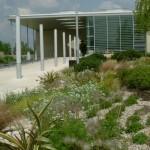 Commercial grounds maintenance Welwyn Garden City, Herts