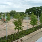Commercial landscaping and tree planting Bucks