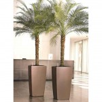Palms in silver planters