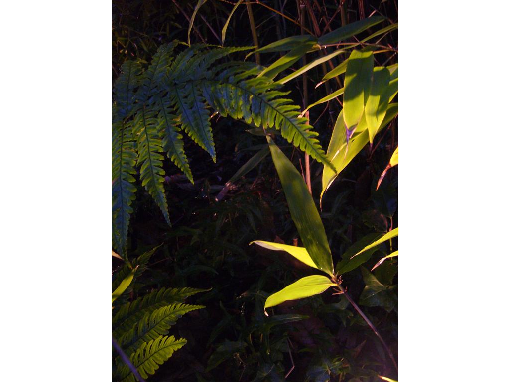 Exterior lighting schemes Buckinghamshire