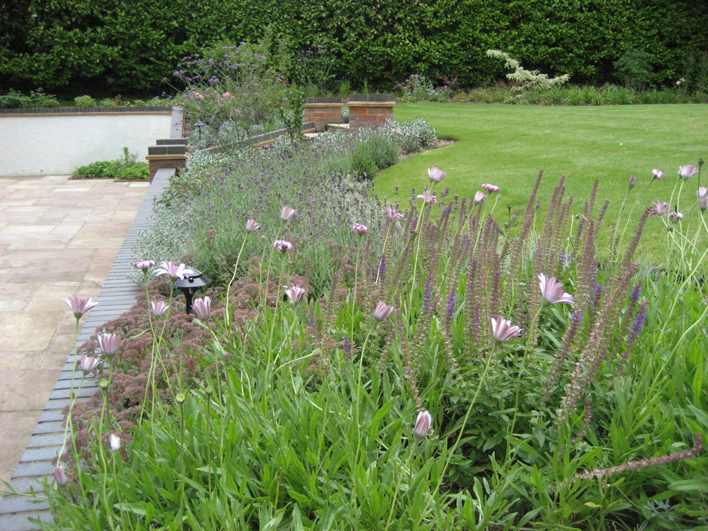 Terrace and planting designed by Richard Key FSGD