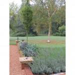 Planting design near St Albans, Hertfordshire