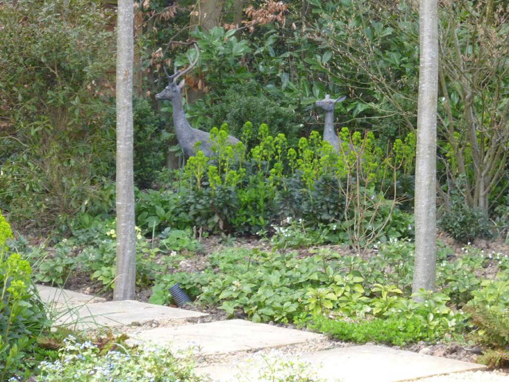 Garden design near Chesham, Buckinghamshire