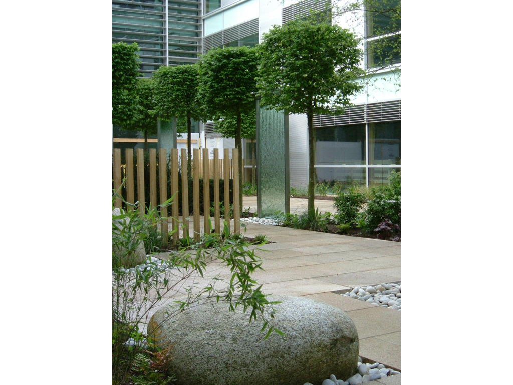 Corporate HQ courtyard design & build The Garden Company