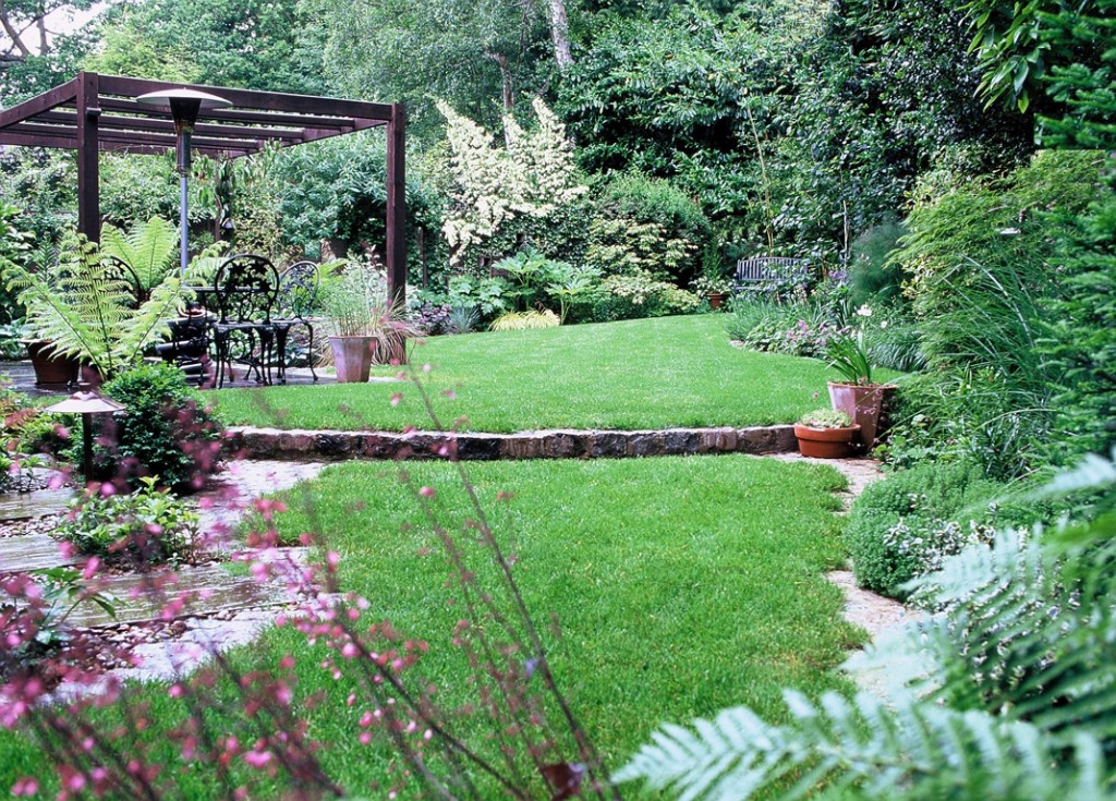 Woodland garden design near Milton Keynes, Bucks