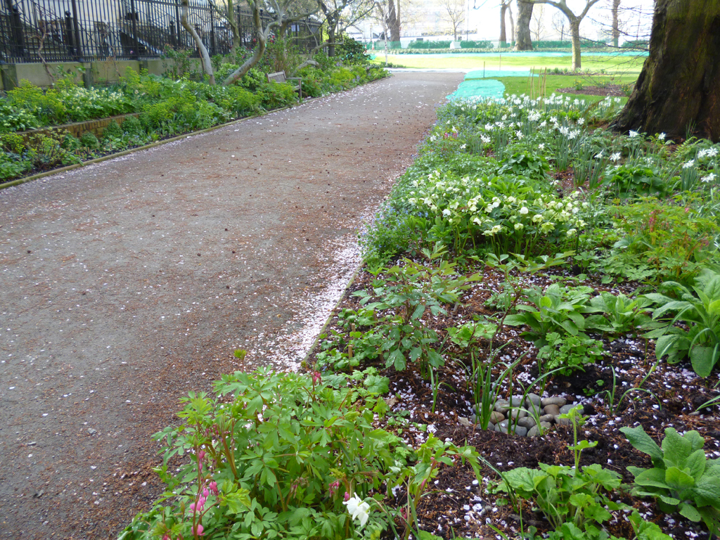 Path works built by The Garden Company
