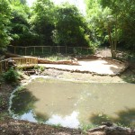 Natural pond, St Albert's School, Hemel Hempstead, Herts
