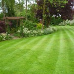 Garden Design, near Hertford