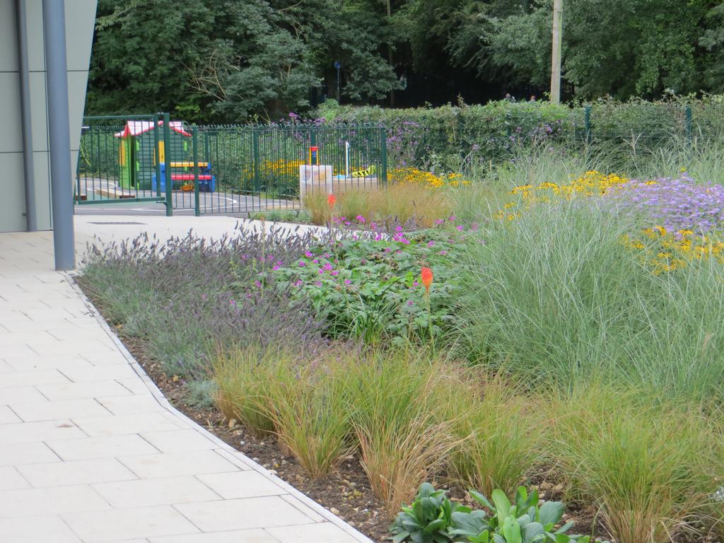 Planting design, Hemel Hempstead, Hertfordshire