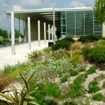 Soft landscaping corporate office site