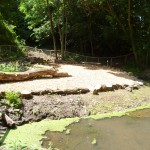 Natural pond construction, Hemel Hempstead