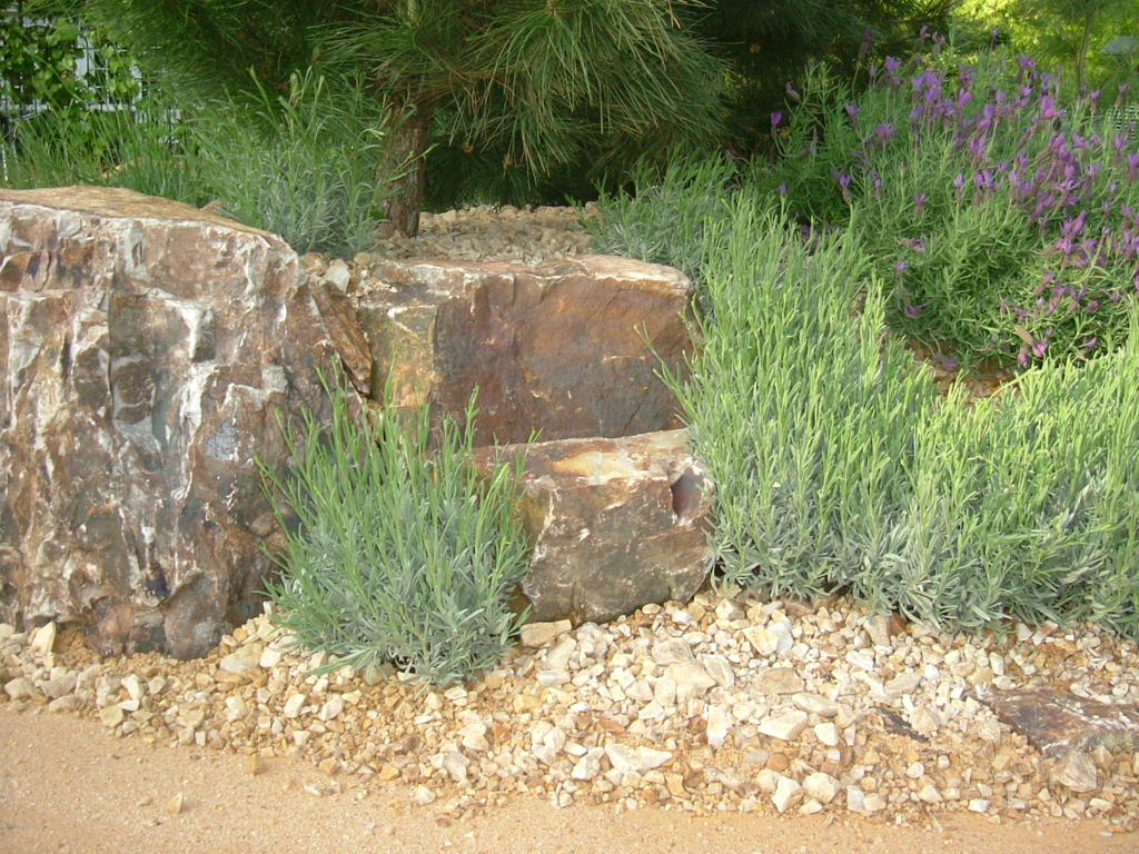 Royal Botanical Gardens, Kew, London mediterranean beach show garden