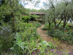 James Basson's Gold Medal winning garden