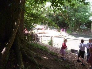 Children exploring and engaging with a wildlife pond