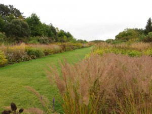 Piet Oudolf planting at RHS Wisley in mid October