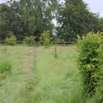 04.917 Garden Barn A17-I