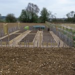 Just completed vegetable garden