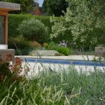 Family garden in Kings Langley