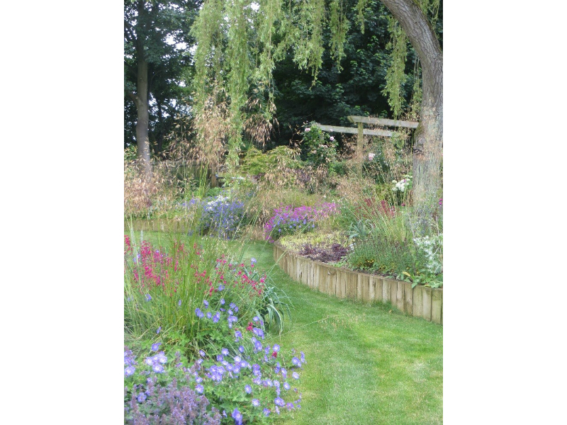 Planting includes: Stipa gigantea, Penstemon 'Garnet' and Geranium 'Rozanne'