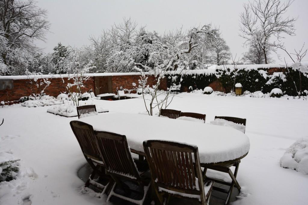 Snowy garden scene