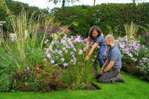 Two gardeners at work