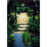 1999 winner domestic garden, Hemel Hempstead, Herts