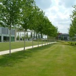 Corporate office grounds maintenance services in Welwyn Garden City, Herts