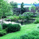 Natural pond and planting