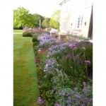 Terrace planting in Summer, near Hemel Hempstead, Herfordshire