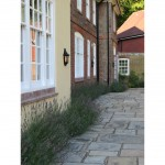 Terrace planting, Berkhamsted, near Hemel Hempstead