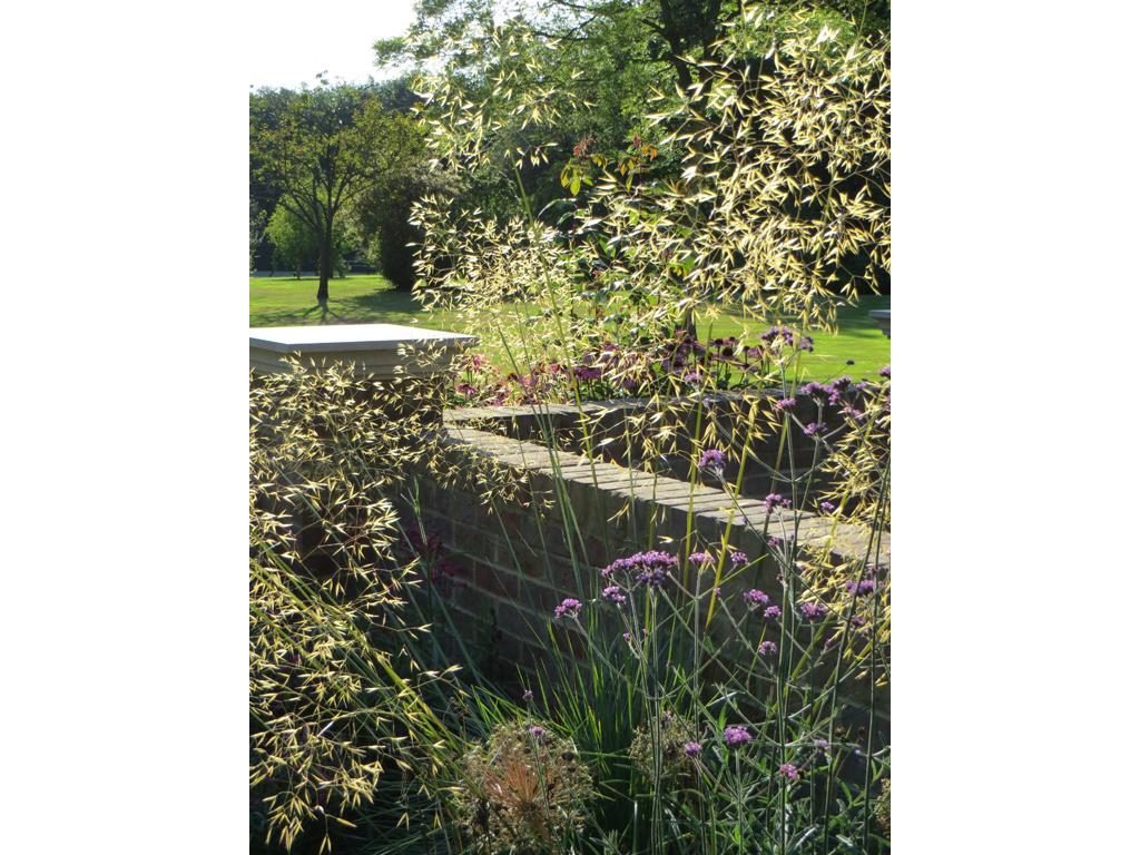 Planting design near Hemel Hempstead, Herts