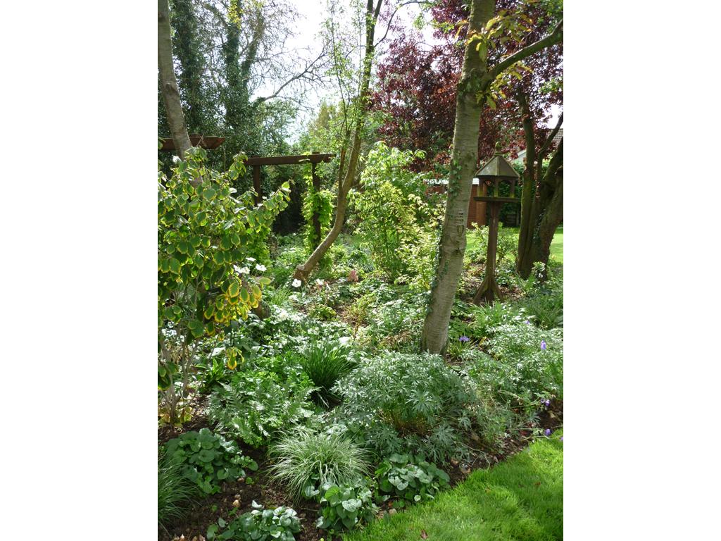 Garden Design, Welwyn Garden City, Herts