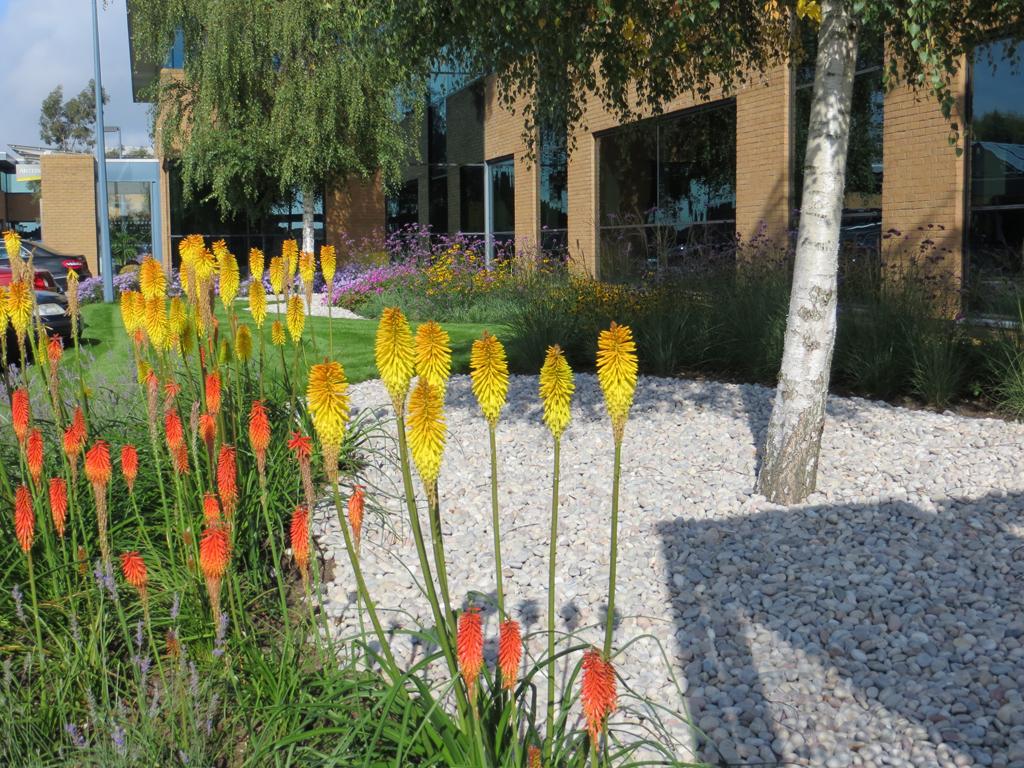 Office Business Park design & build, Ruislip, Middx