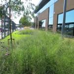 Landscape design & build Middlesex