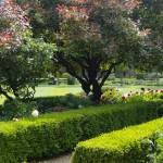 Hanbury Manor Landscape design & build