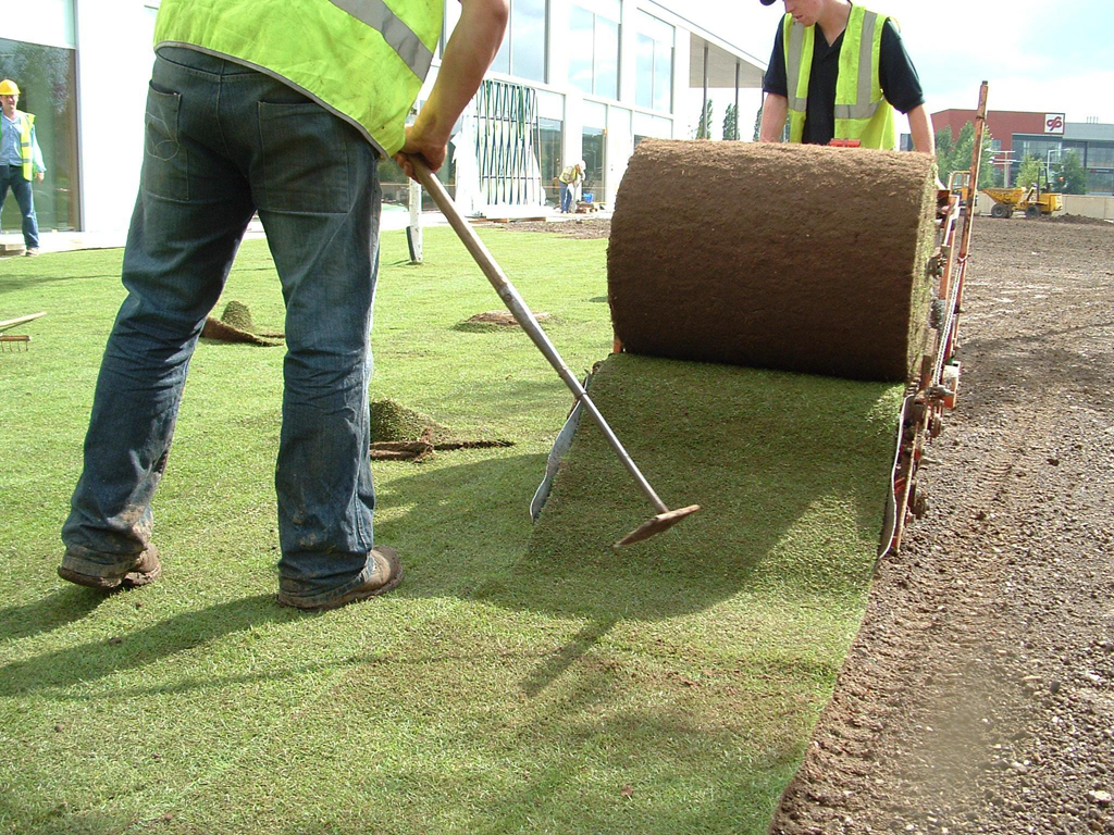 Laying turf commercial HQ WGC Herts