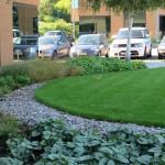 Commercial Office Suite soft landscape design & build, Middx