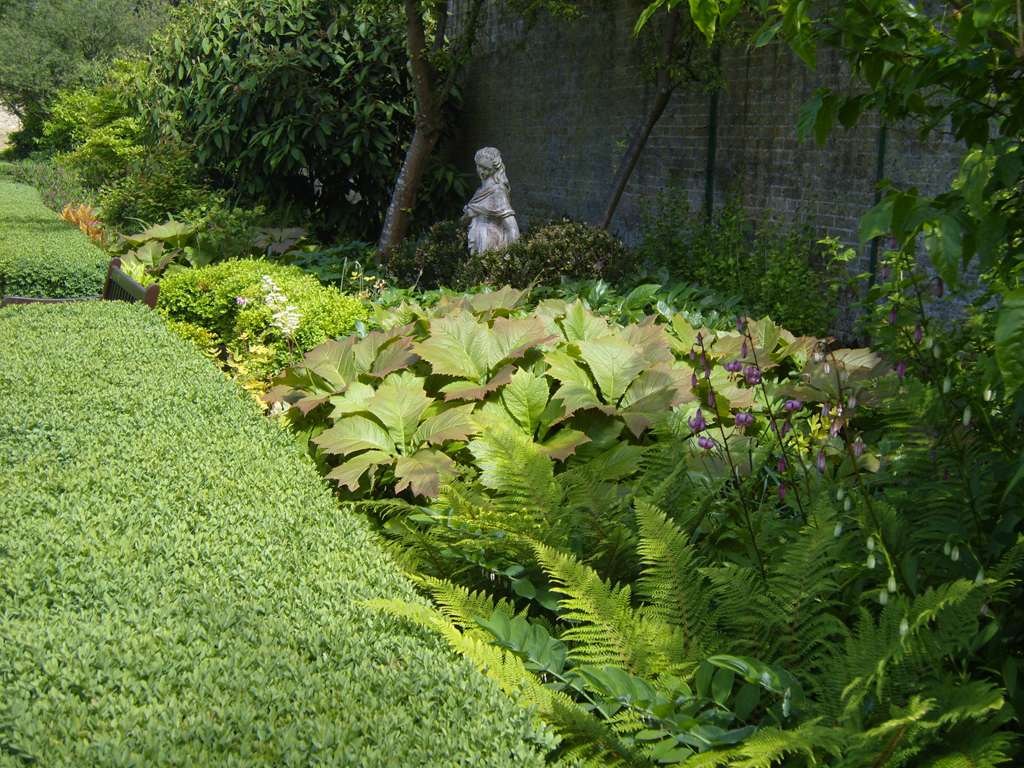 Shady area planting design by James Scott
