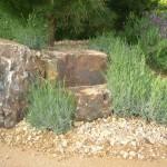 Planting and rock detail 1 on Kew's mediterranean beach garden