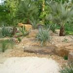 Planting, rock and sand detail 3 on Kew's mediterranean beach garden
