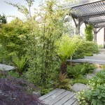 05.906 Garden Laurel A11 CR