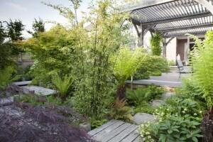 Award winning garden Rebecca Bernstein